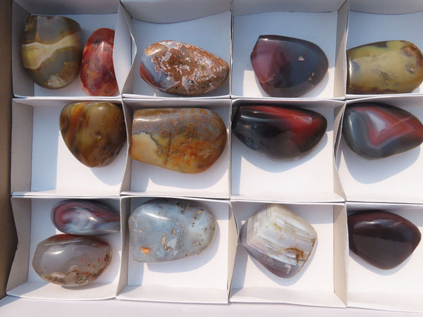 Polished  Sashe River Agate Free Forms x 14 From Zimbabwe