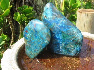 Polished Shattuckite Standing Freeforms x 2 from Namibia