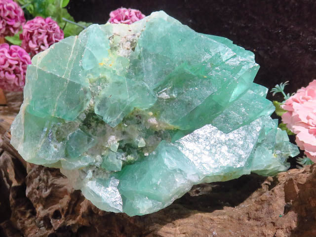 Natural Octahedron Emerald Green Fluorite Specimen x 1  from Northern Cape, South Africa