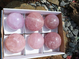 Polished Rose Quartz Balls x 6 from Madagascar