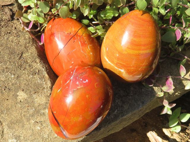 Polished Red Ocean Jasper Eggs & Balls x 12 from Madagascar