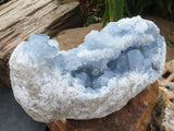 Large Natural Celestite Specimen x 1  from Sakoany, Madagascar
