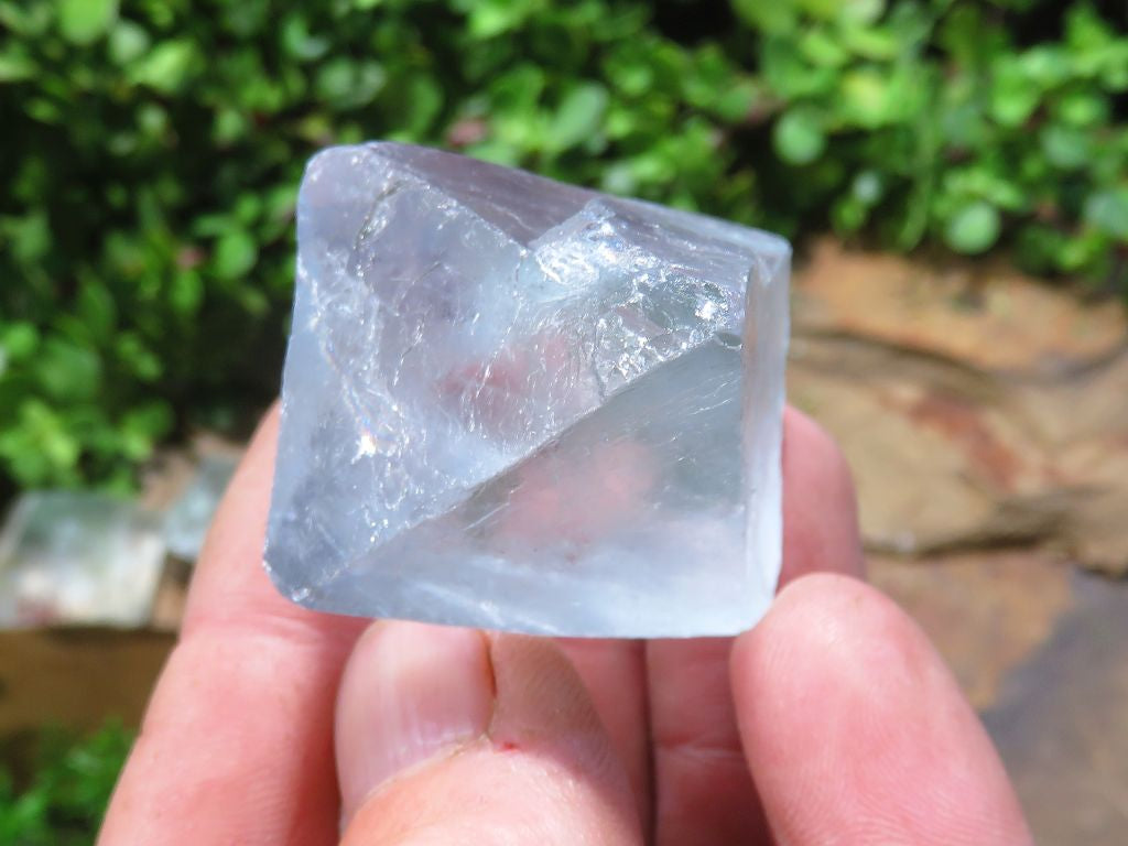 Natural Large Fluorite Octahedron Crystals x 12 from Northern Cape, South Africa