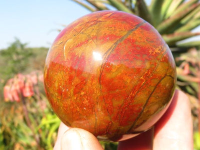 Polished Red Ocean Jasper Eggs and Balls x 6 from Madagascar