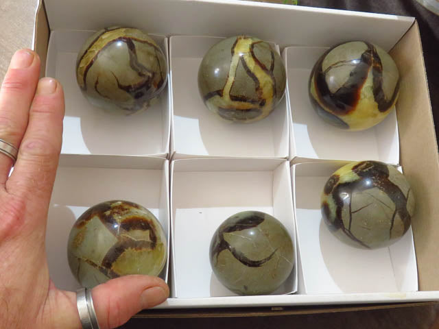 Polished Septerye Balls x 6 from Madagascar