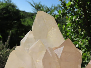 Natural XL Frosted Quartz Cluster x 1 from Madagascar