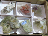 Natural Mixed Mineral  & Fossil Specimens x 6 from Mixed Localities - TopRock