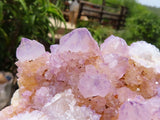 Natural Phantom Spirit Amethyst Quartz Crystal Plates x 3 from Kwandebele, South Africa