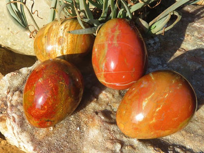 Polished Red Ocean Jasper Eggs x 12 from Madagascar