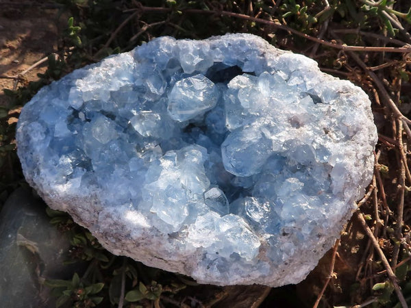 Natural XL Celestite Geodes x 2 from Sakoany, Madagascar