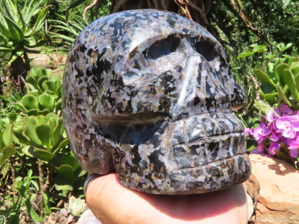 Polished Large Merlinite Sculpted Skull x 1 from Madagascar