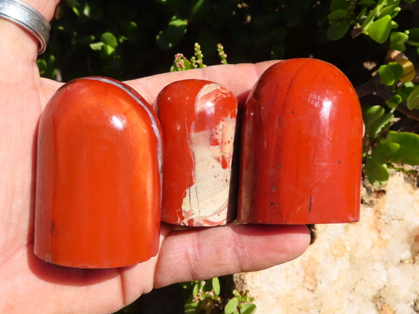 Polished Medium Red Jasper & Bloodstone Standing Knobs x 6 from South Africa