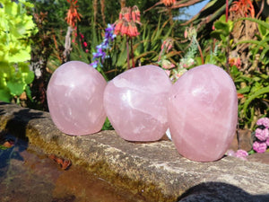 Polished Rose Quartz Standing Crystal Free Forms x 12 from Malawi