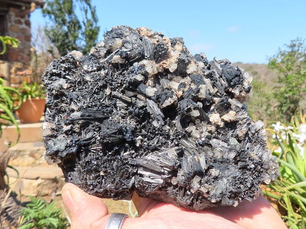 Natural XL Gazlesite & Schorl With Clear Beryl Crystal All Over Specimen x 1 from Erongo, Namibia