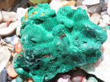 Natural Medium Silky Malachite Specimens x 6  from Kasompe, Congo