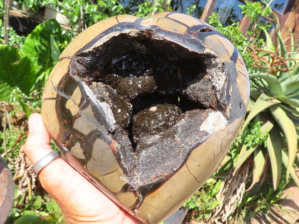 Polished XL Septerye Savage With Black Calcite Lined Vug Dragons Heart With A Cap x 1 from Mahaganja, Madagascar