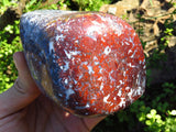 Polished Flower Jasper Standing Free Forms x 2 from Namibia