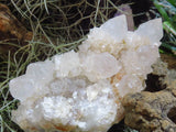 Natural mixed Spirit Quartz Clusters x 6 from Kwandebele, South Africa