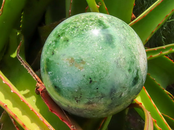 Polished Medium Chrysoprase Ball x 1 from Madagascar