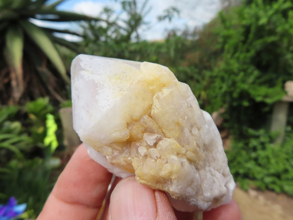 Natural Pineapple Quartz Crystals x 24 from Ansirabe, Madagascar