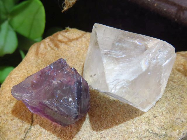 Natural Small Fluorite Octahedron Crystals x 65 from Northern Cape, South Africa - TopRock