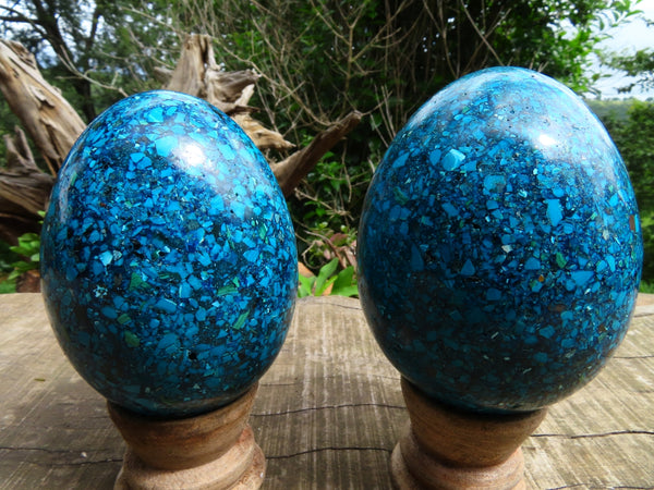 Polished Medium Chrysocolla Conglomerate Eggs x 2 From Congo