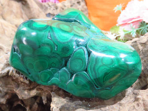 Polished Malachite Pieces x 2 from Kolwezi, Congo - TopRock