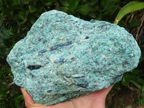 Natural Extra Large Green Fuchsite matrix specimen with Kyanite Crystals x 1 from Karibib, Namibia