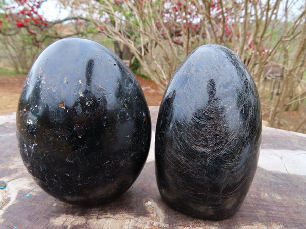 Polished Black Tourmaline Schorl Standing Display Free Forms x 2 from Madagascar