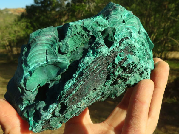 Natural Solid Rough Cutting Malachite Specimens x 2  from Congo