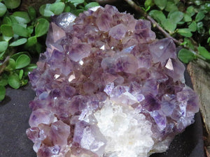 Natural Dark Amethyst Spirit Quartz Plate x 1 from Kwandebele, South Africa