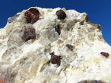 NATURAL RED GARNETS ON MATRIX x 1 from Namibia - TopRock