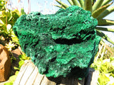 1 XXL natural silky malachite display piece - TopRock