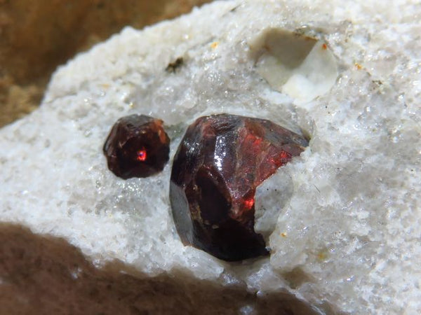 Natural Red Pyrope Garnet in matrix x 15 from Namibia - TopRock