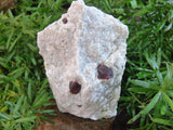 Natural Red Pyrope Garnet Crystals in Matrix x 15 from Namibia - TopRock