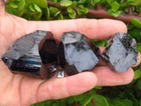 Natural Black Schorl Specimens x 24 from Namibia, Erongo