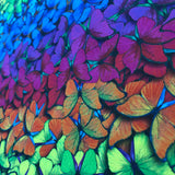 Rainbow Butterfly- Digital Cotton