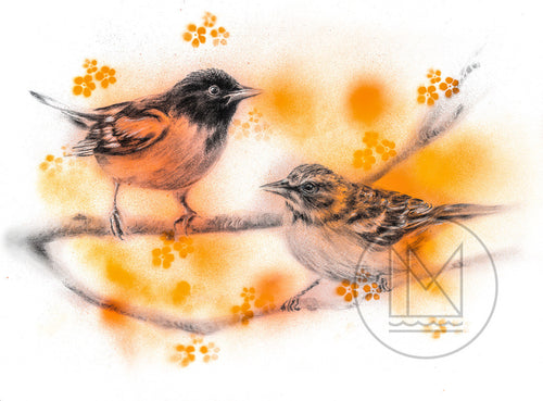Baltimore Orioles Charcoal Drawing with Orange Spray Paint Accents