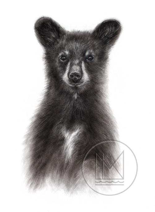 mississippi north wildlife painting and drawings by