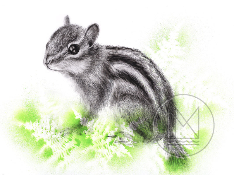 Little Chipmunk Charcoal Drawing with Green Spray Paint Stencil Ferns