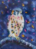 Kestrel Painting