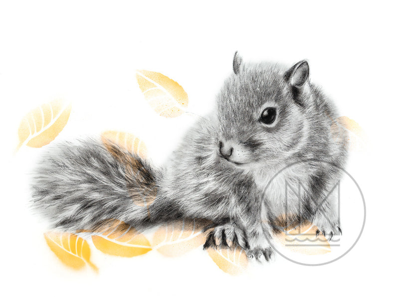 Baby Grey Squirrel Charcoal Drawing with Yellow Spray Paint Stencil Leaves