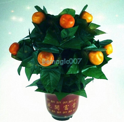 10 Blooming Oranges - Remote Control -- Stage Magic - Bemagic