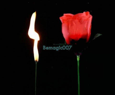 2 pcs Fire Rose -TORCH TO ROSE - Fire Magic - Bemagic