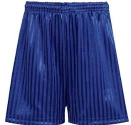 TRENODE PE SHORTS - ROYAL