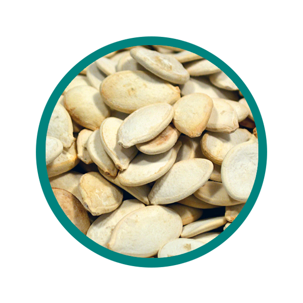 Pumpkin Seeds - Roasted and Salted