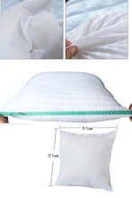 Pillow Insert - ASSORTED SIZES