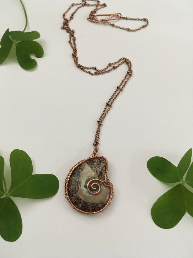 Ammonite Fossil Necklace – Simple Wealth