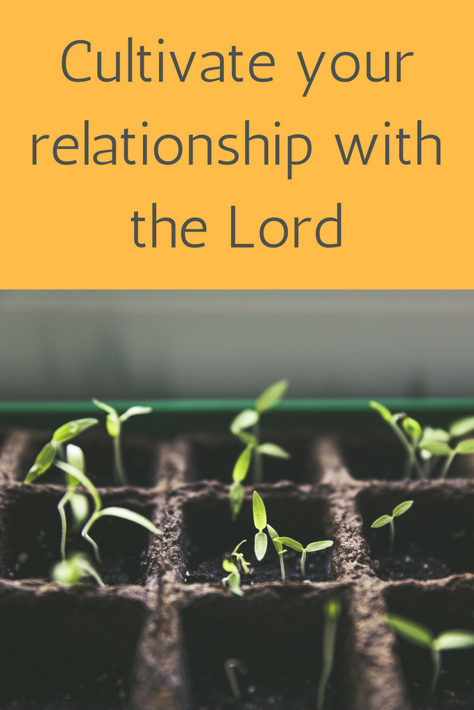 Cultivate your relationship with the Lord
