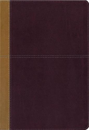 KJV, Amplified, Parallel Bible, Large Print, Leathersoft, Tan/Red, Red Letter Edition: Two Bible Versions Together for Study and Comparison: Zondervan: 9780310443346
